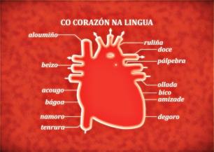 cocorazonnalingua2
